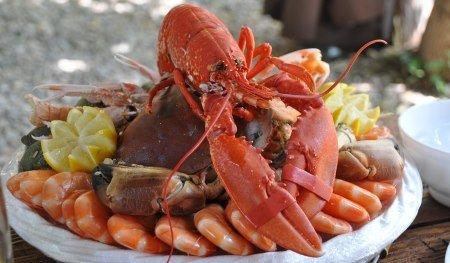 Proteinhaltige Lebensmittel - Meeresfrüchte